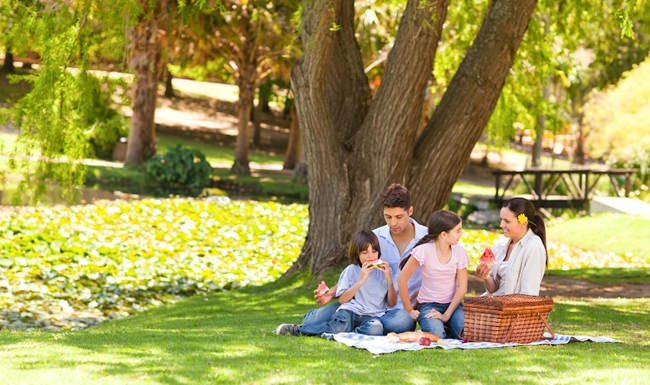 family under a tree for a picnic